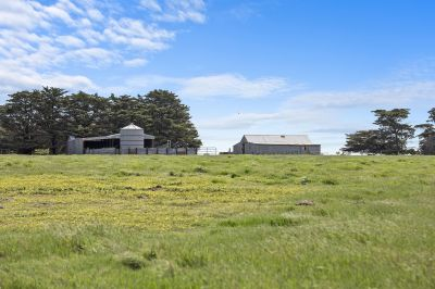 An ideal opportunity to establish your country lifestyle.   80.9ha 200 acres approx.