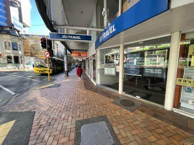 Ground/105 Willis, Wellington Central