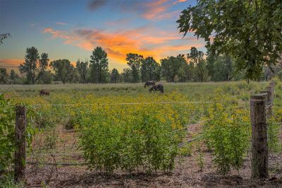 Modern Brick Home on loamy 2 Acres - Perfect for the Horse Lover