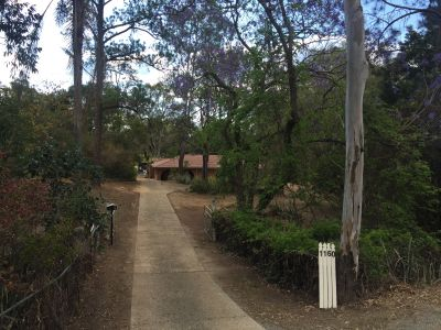 Large house, 2 acres + pool, 500m to Petrie station