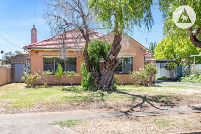 44 Windsor Avenue, Clearview