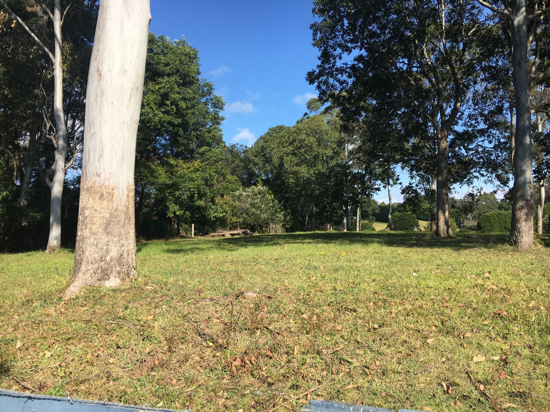 TAMBORINE MOUNTAIN, QLD 4272