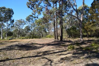 67 Acres (27ha)  Very Rare Opportunity