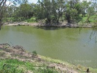 Picturesque Property with Darling River Frontage