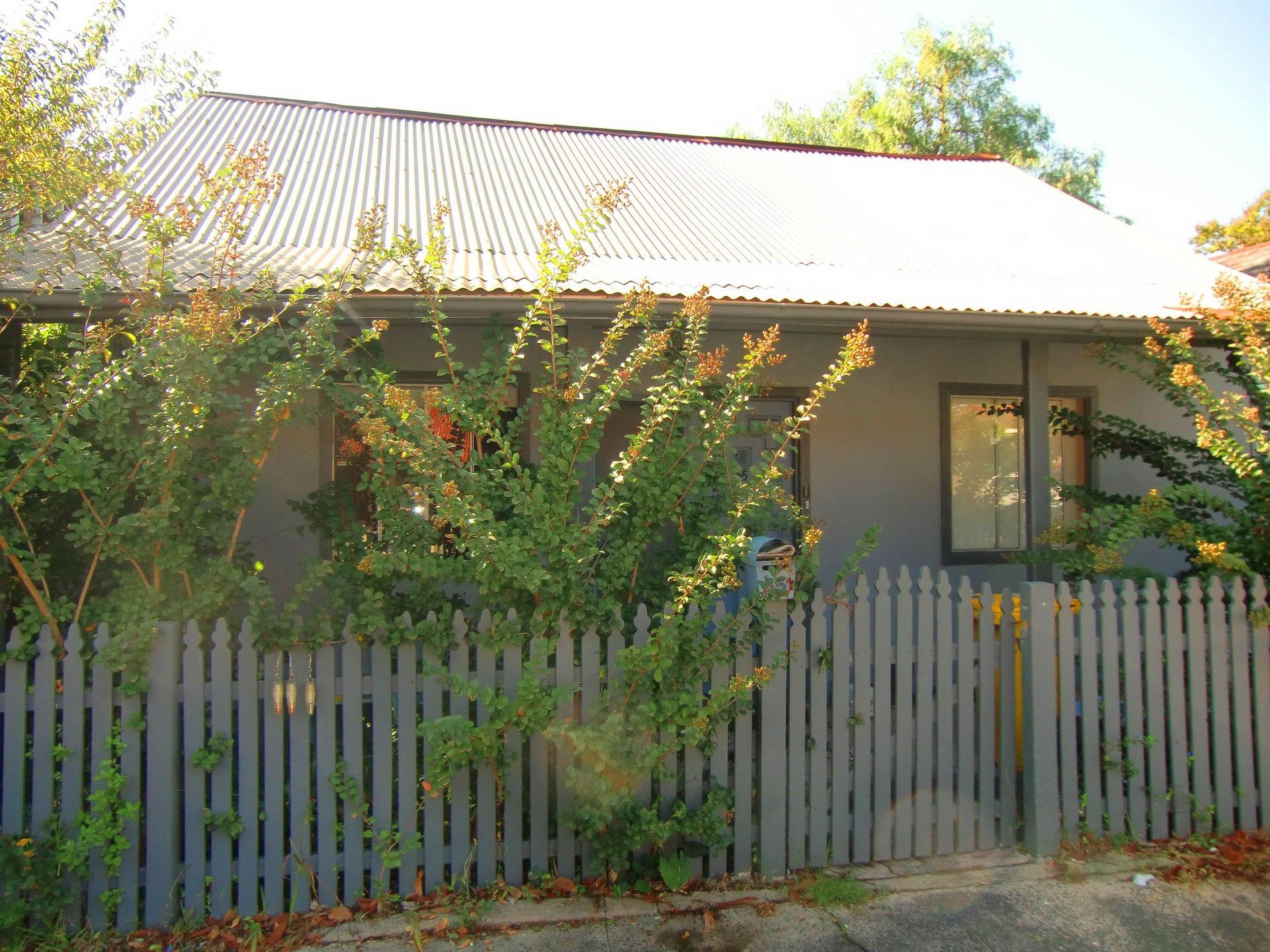 Real Estate For Lease - 55 Mackenzie Street - Leichhardt , nsw