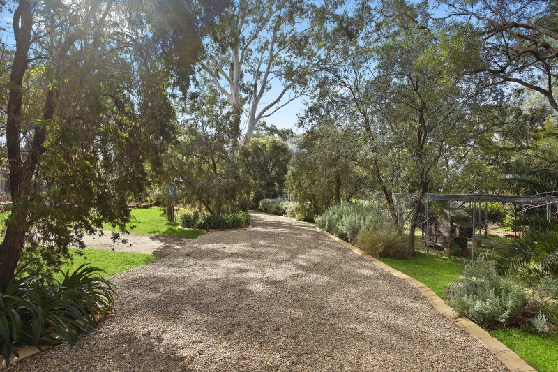 An Oasis on 12.67 Acres