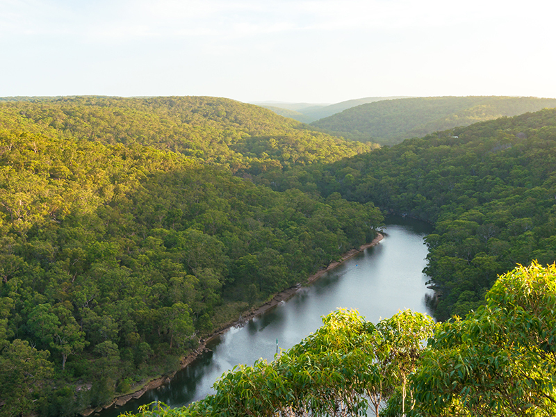 Land for sale BARDEN RIDGE NSW 2234 | myland.com.au