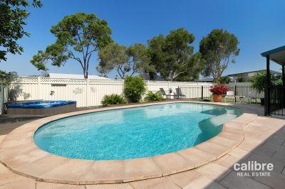 Entertainer's Dream! Inground Saltwater Pool & Spa! Massive 764sqm corner block! Side-Access!