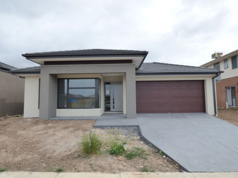 FIRST CLASS TENANT WANTED: Brand New Home, High Quality Finishes! L/B