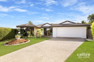 Huge Family Home, Elevated Lot, Massive 700sqm block!
