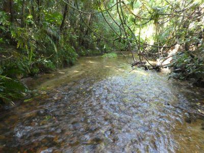 , Mena Creek