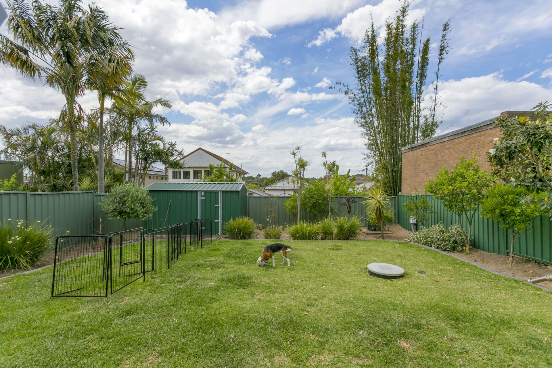 9 Burlington Avenue, Earlwood