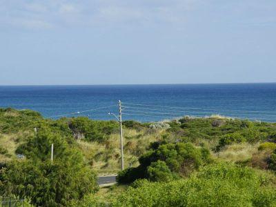 Ocean Panorama