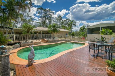 Room for the Truck or Caravan - 9 Car Spaces - 3 Huge Living Areas - Enormous Covered Patio - Inground Pool