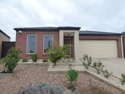FIRST CLASS TENANT WANTED! Established Quality Home in Point Cook!