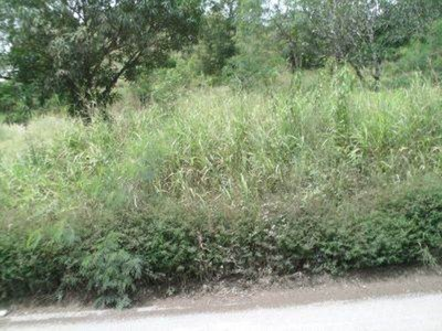 Land for sale in Port Moresby Laloki
