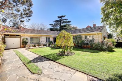 51 Devereux Road, Linden Park