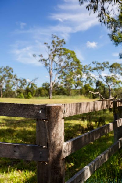 VACANT RURAL LAND - BUILD YOUR DREAM HOME