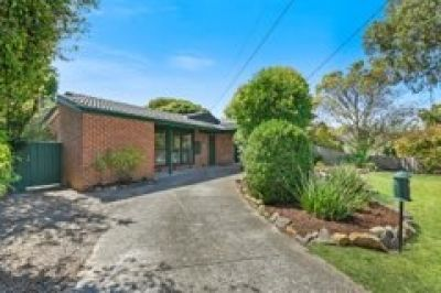 Wantirna - Four bedroom home