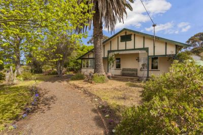 An Exceptional, Once in a Lifetime Investment Opportunity!