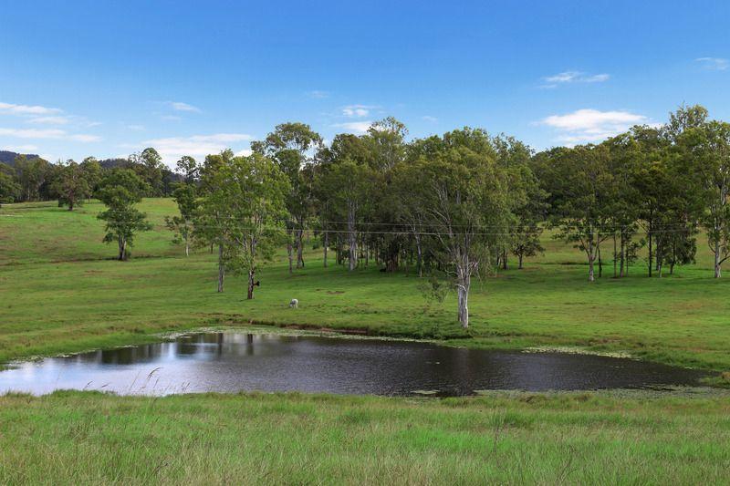, Belli Park QLD 4562