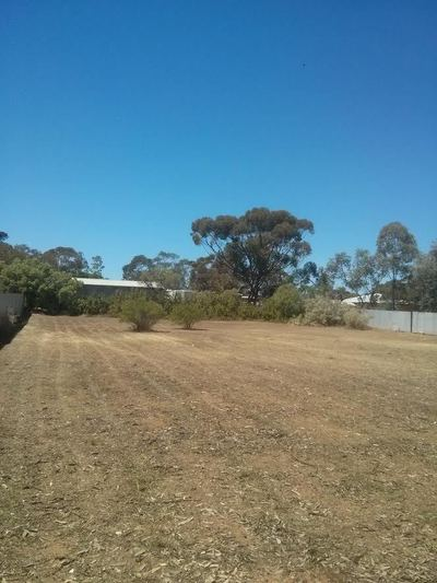 Bargain Block of Land in Centre of Hawker