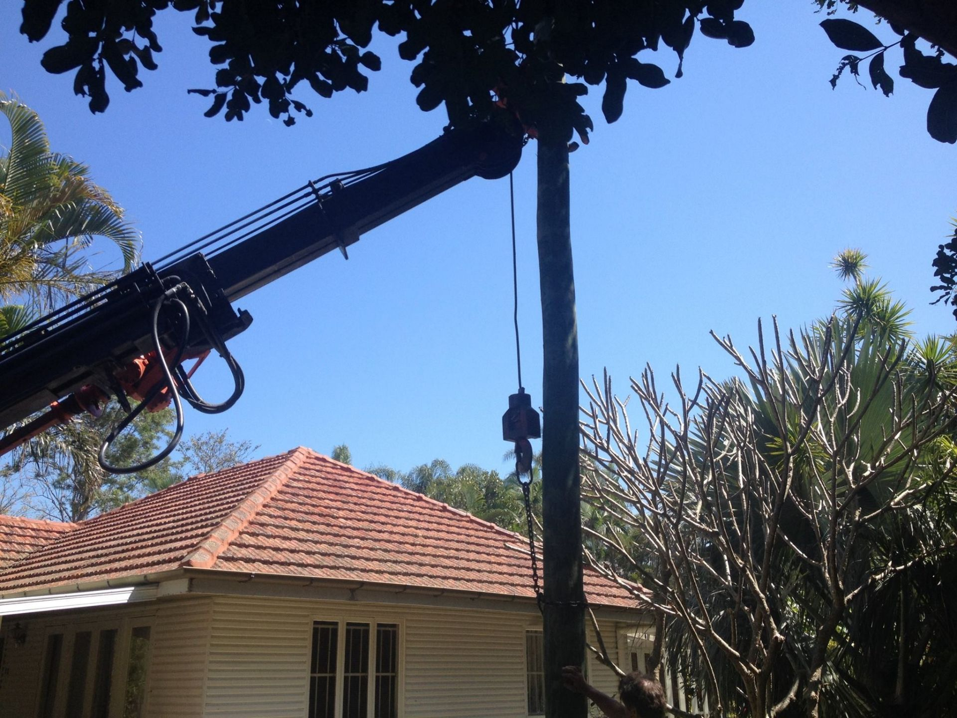 ALL POLE SERVICES (POWER POLE INSTALLATION/ REPLACEMENT)