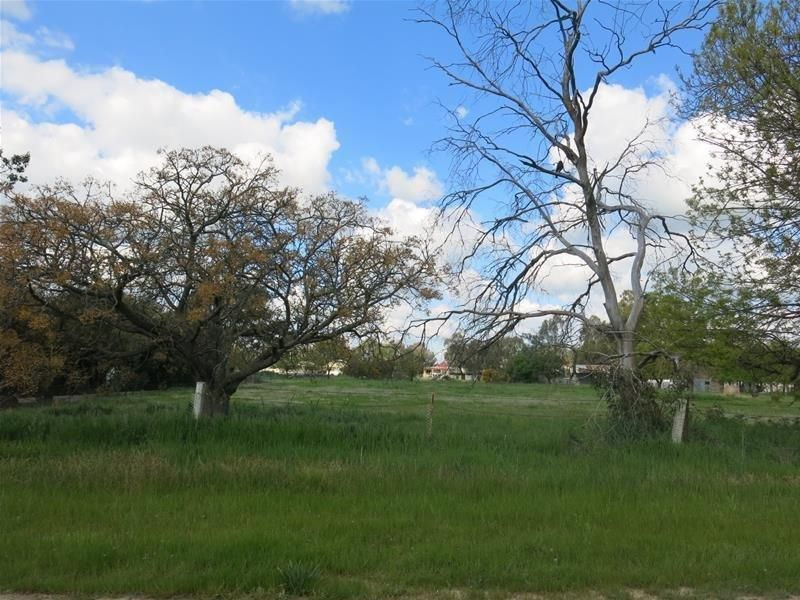 Country Living - 20 Mins from Wagga