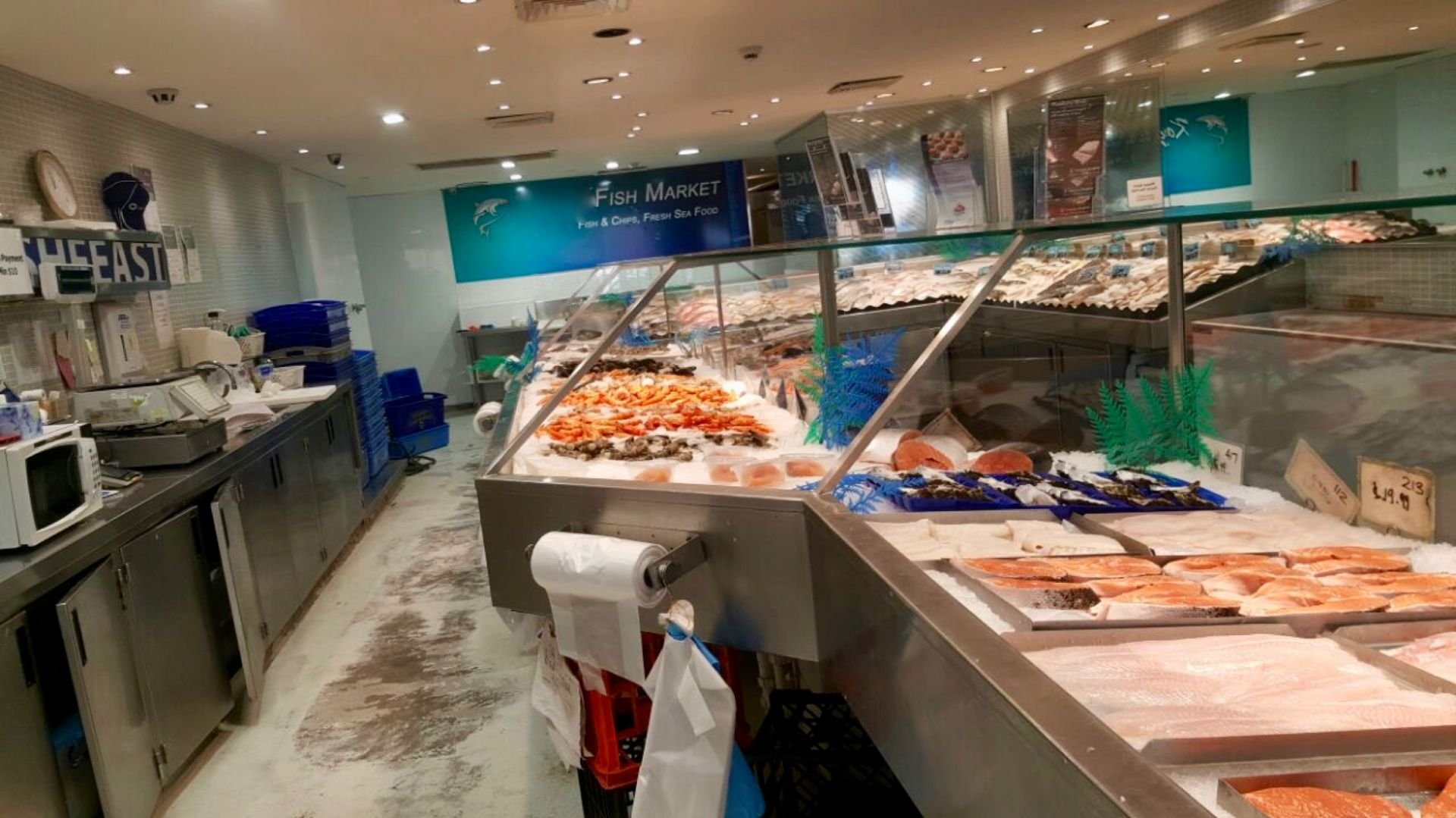 Busy Fish and Chips shop in Kogarah, Sydney. Low rent. Serving quality range of fresh and cooked Seafood, delicious grilled fish, burgers and salads. Busy shop situated south of Sydney.