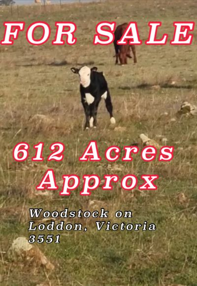 612 Acres with WIMMERA HIGHWAY Frontage