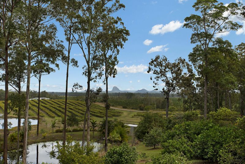 Rural Lifestyle With Potential Income Stream - Sunshine Coast
