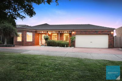 The Spacious, Stylish Entertainer on 715m2 Land!