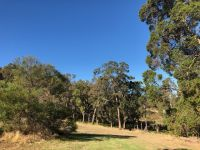 3.41 ACRES WITH A WINTER CREEK