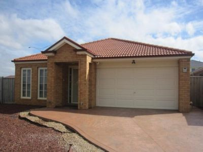 4 bedroom  Family home plus study !