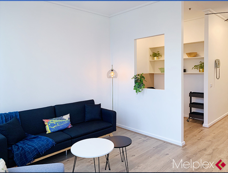 Newly-Renovated  One-Bed Plus Study Apartment with Furniture
