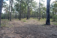 Lot 244 Millingandi Ridge Road Millingandi, Nsw