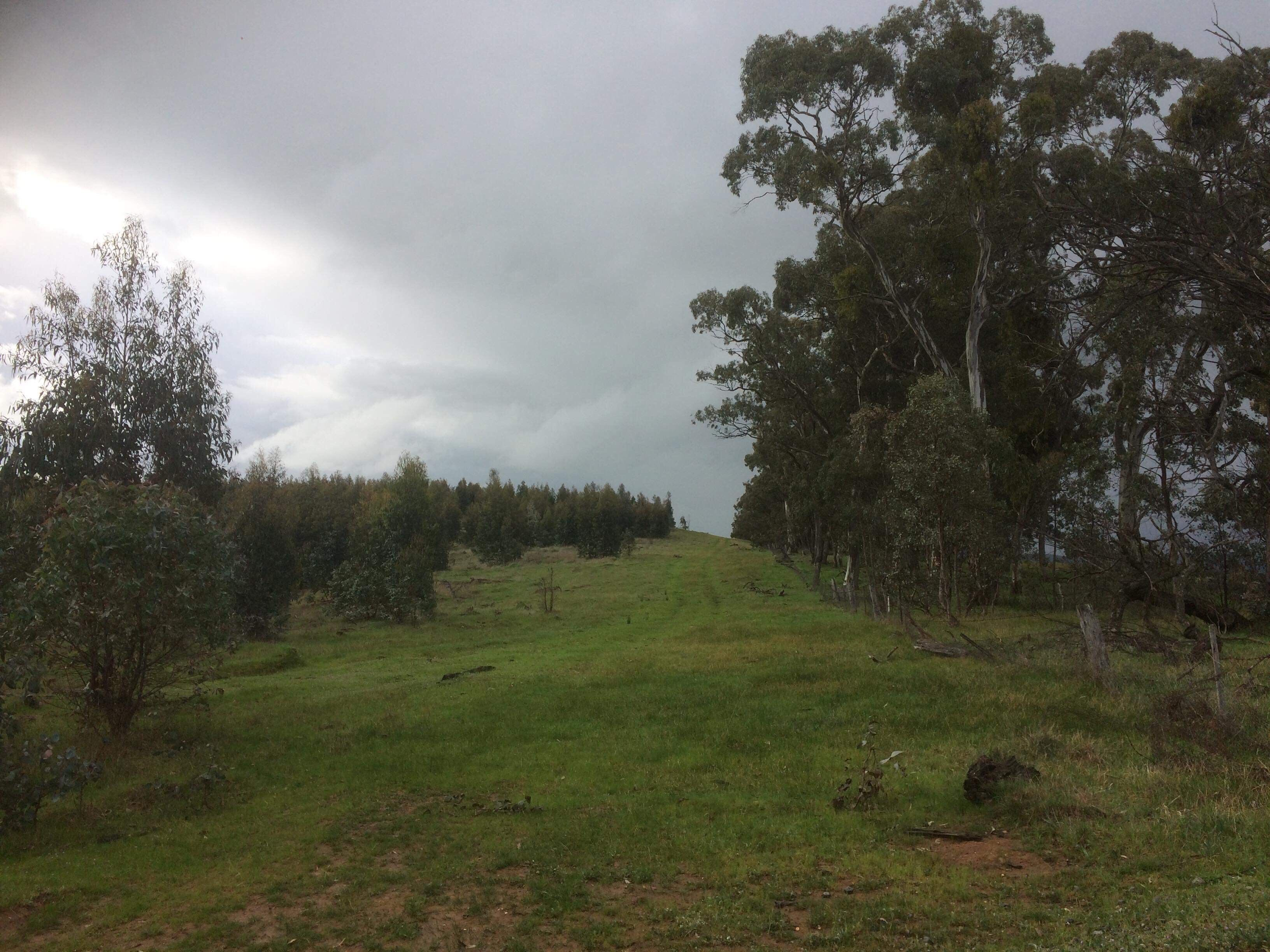 C/ A A12 Parcel H Iron Pot Creek Road, Mount Cole Creek VIC 3377