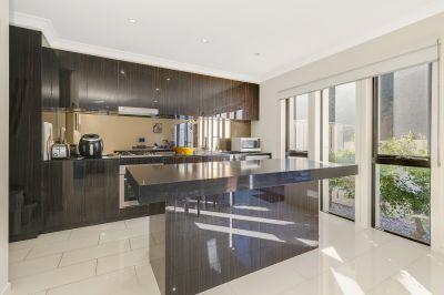 5 Star Estate - Glades Glasswing!