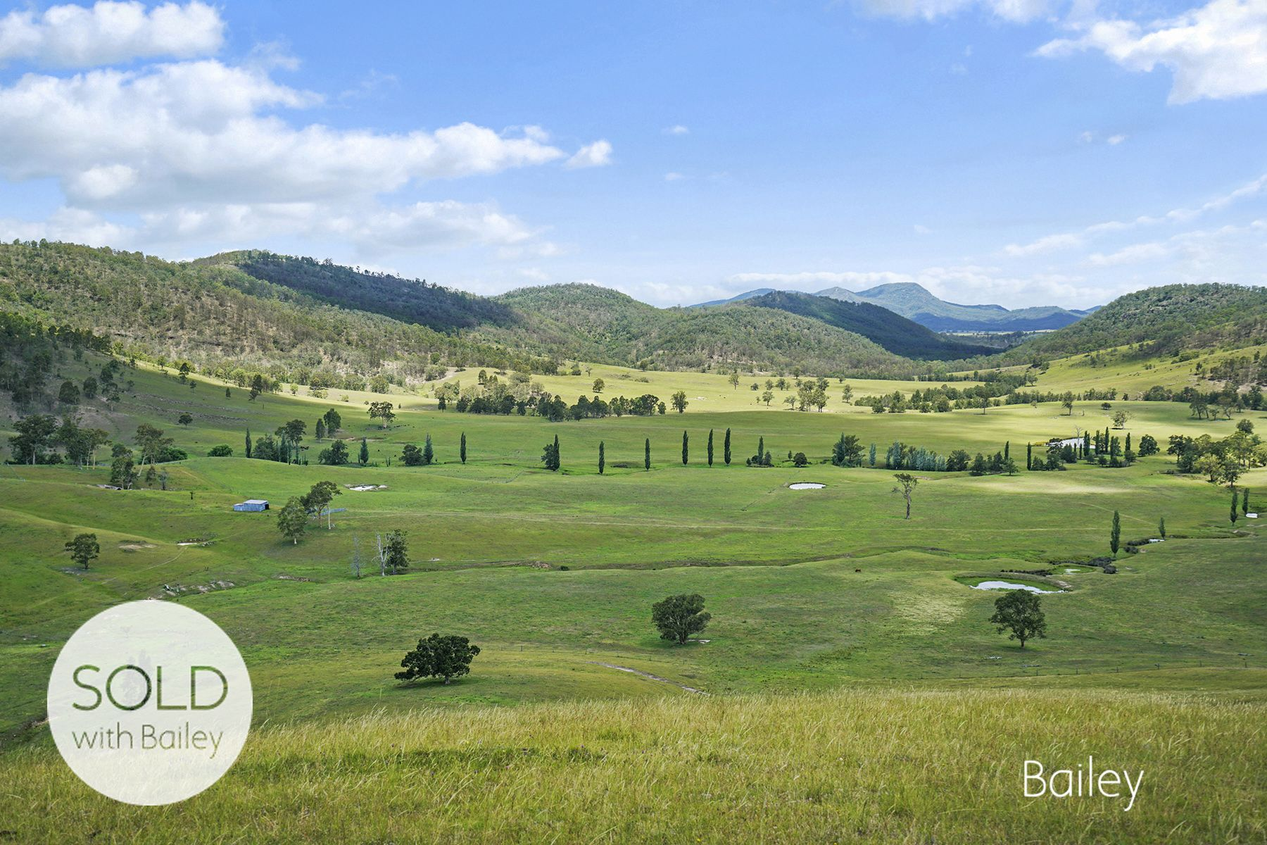 FIRST CLASS HUNTER VALLEY GRAZING PROPERTY
