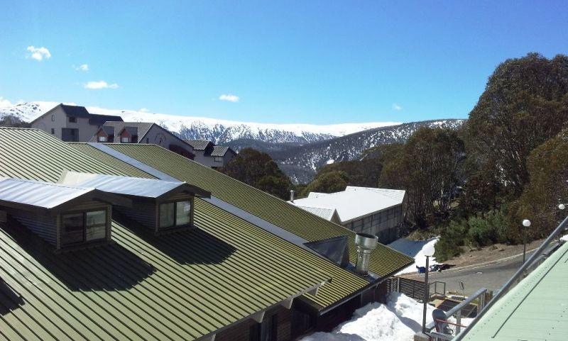 Alpine View 8