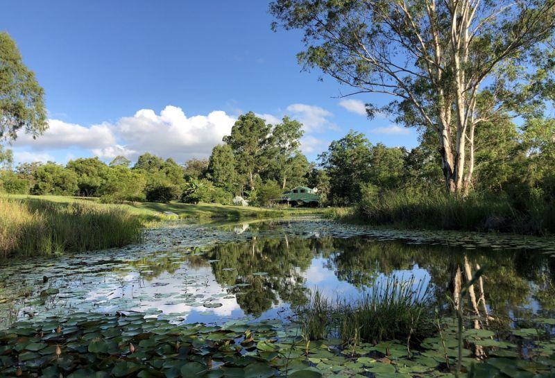 BETWEEN TOURIST DAM & STATE FOREST