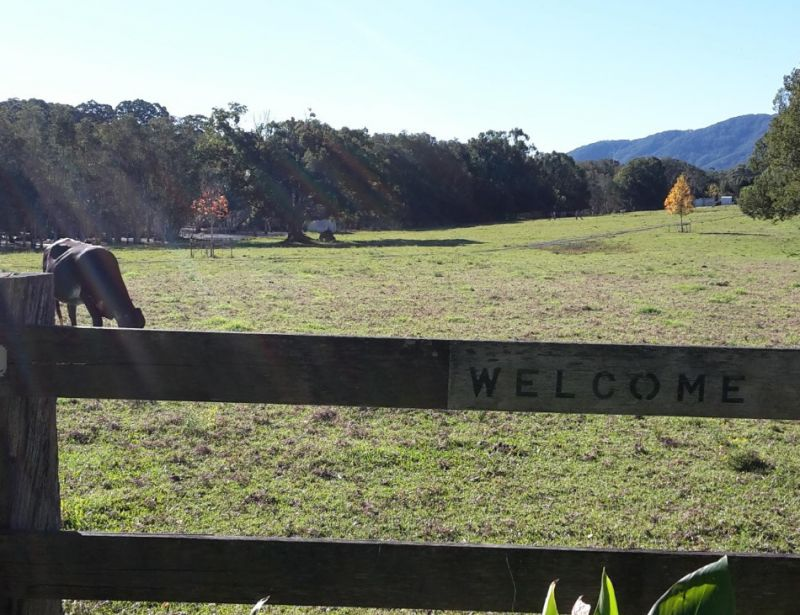 Freehold Cafe Business Between Port Macquarie and Taree Mid North Coast NSW