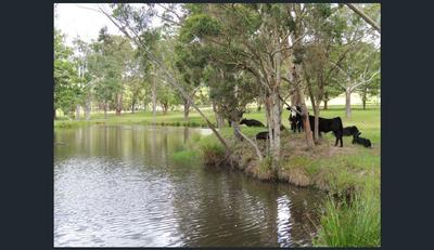 RARE 40 ACRES ,TOWN WATER,HORSE LOVERS PARADISE