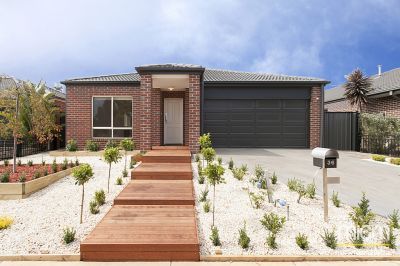 Impressive and Bright Innisfail Estate Beauty