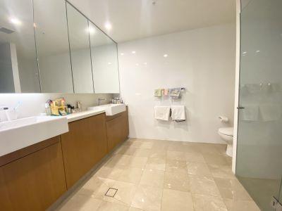 3805/438 Victoria Avenue, Chatswood