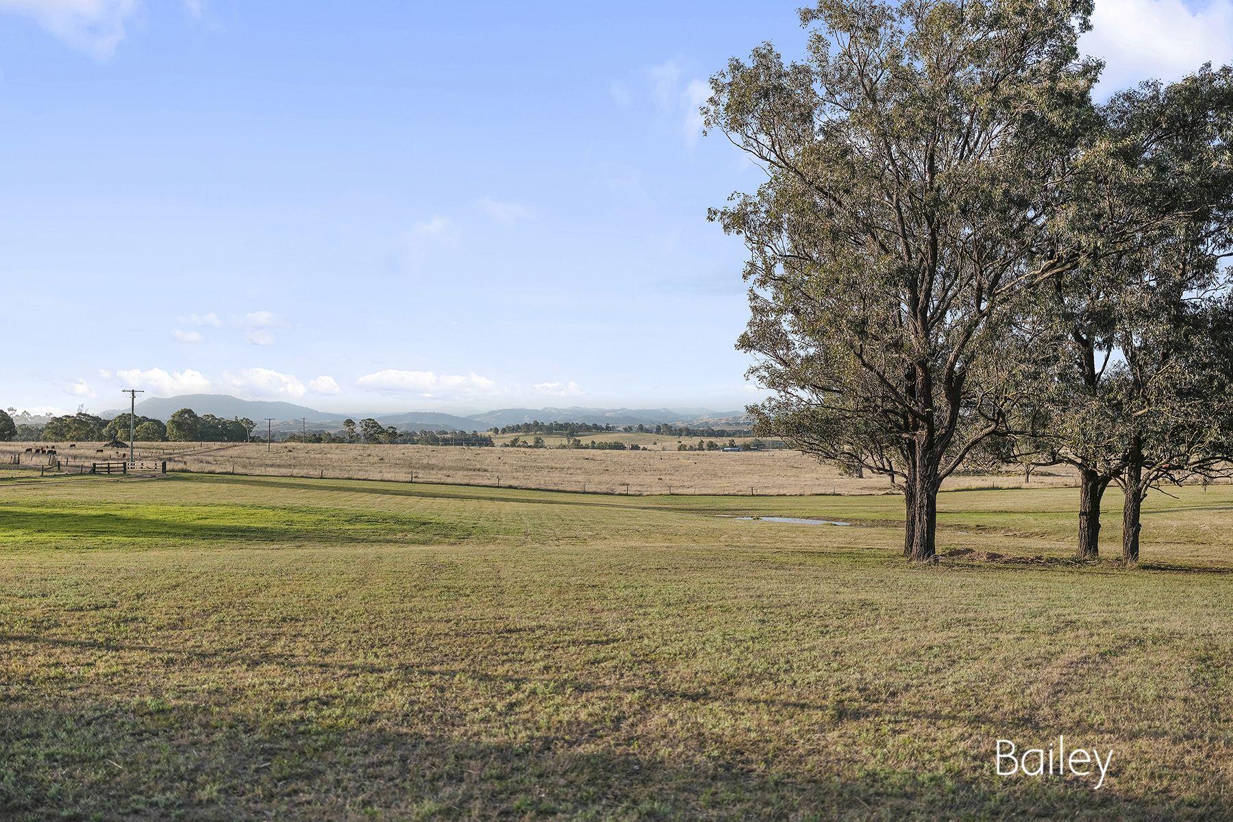 140B Mitchells Flat Road, Singleton