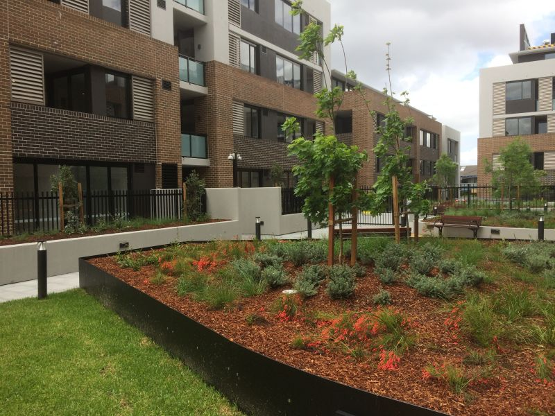 Private Rentals: Beecroft, NSW 2119
