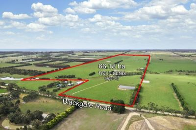 Outstanding Rural Holding - 66.18 ha - (163.50 acres) approx.