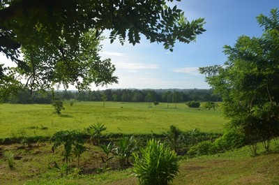 S6863 - Songkain Plantation for sale - SGN