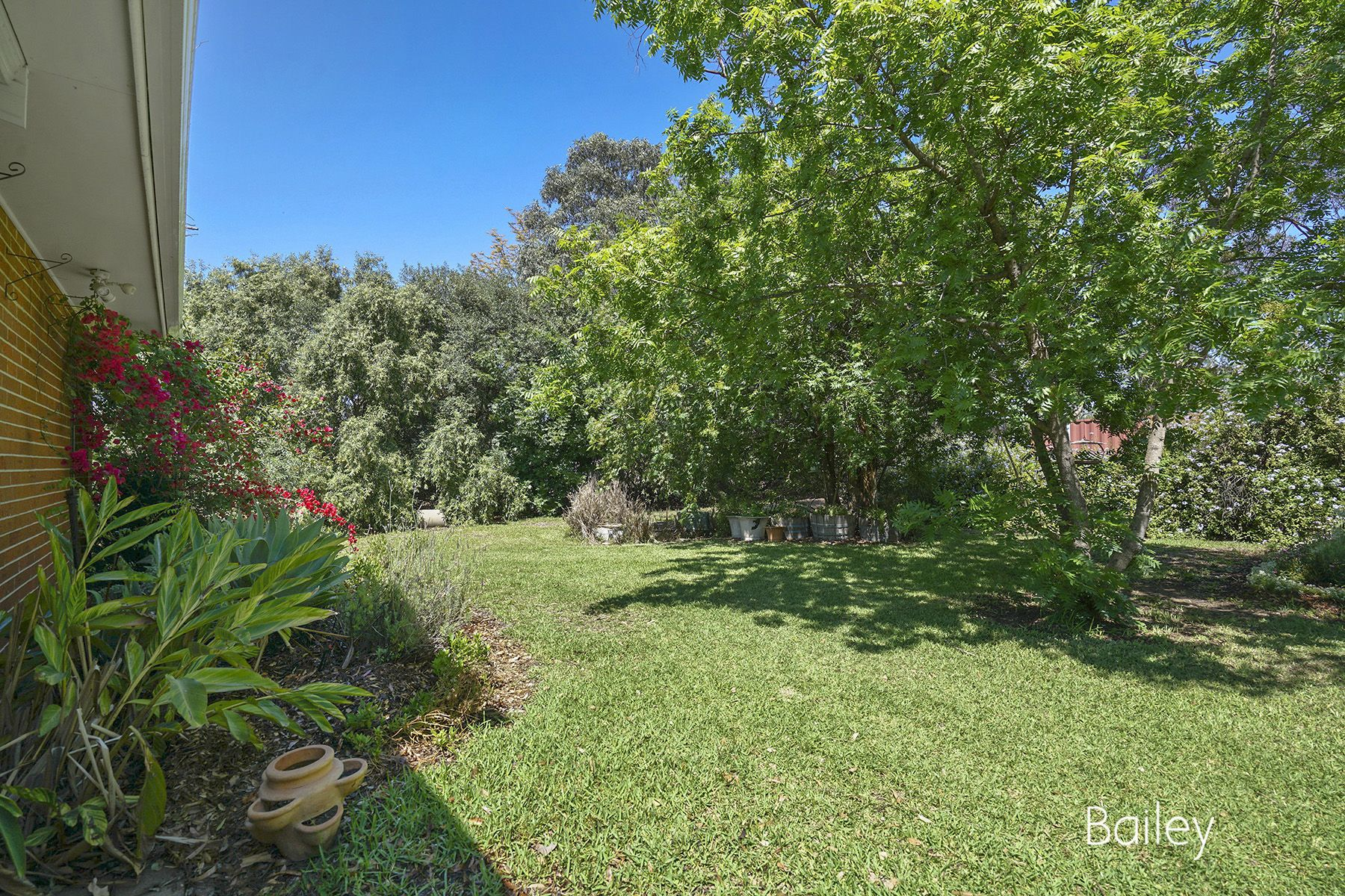 297 Hambledon Hill Road, Singleton